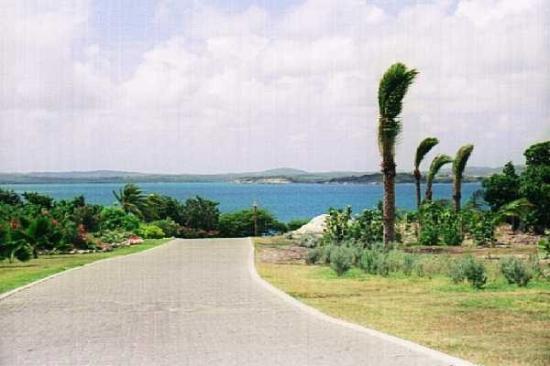 Street on Jumby Bay Island