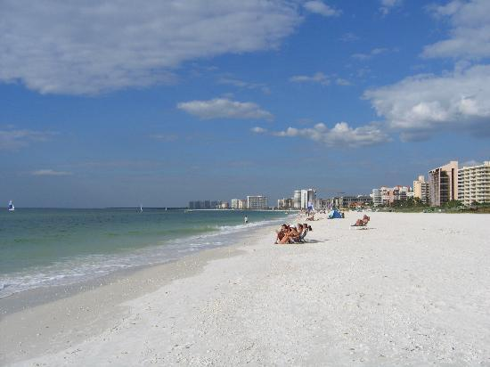 Hilton Marco Island Beach Resort: beach right outside hotel