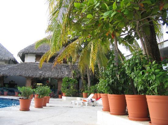 Hotel Villas Paraiso: Gardens & Pool at Villas Paraiso