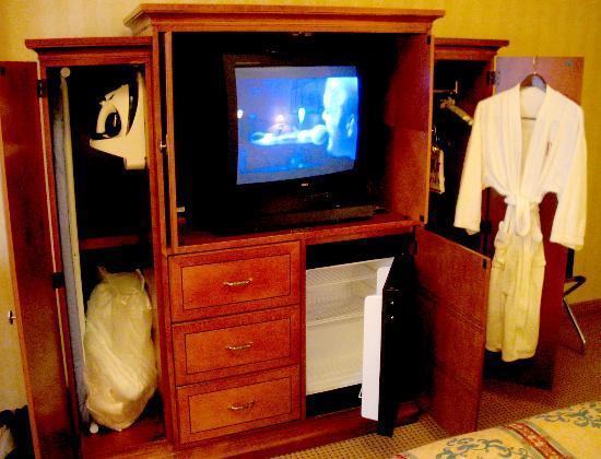 سان ماتيو ماريوت سان فرانسيسكو إيربورت: TV, refrigerator, robe, iron and ironing board