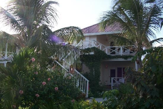 Galley Bay Resort : Deluxe beachfront rooms