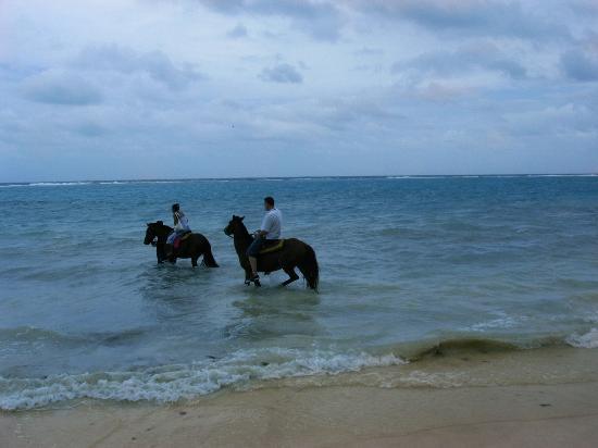 Sand Castles Resort: horse riding