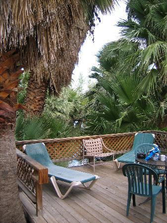 Twentynine Palms, CA: the patio of the Old Frame cabin - and the 29 palms