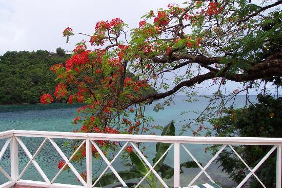 Marigot Bay, Saint Lucia: 3 bed villa terrace view