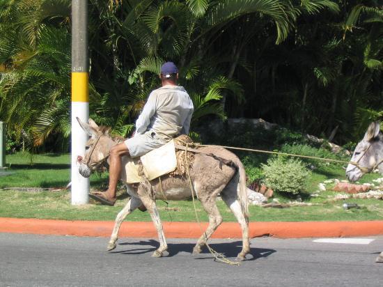 Puerto Plata Village Resort: Street Traffic