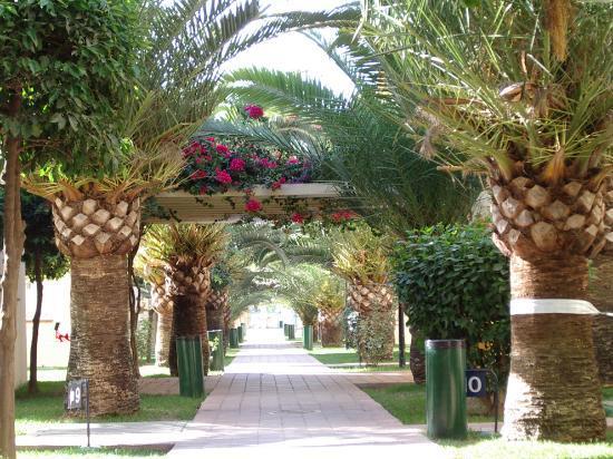Hotel Pueblo Camino Real: garden