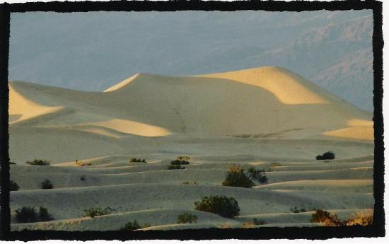 Death Valley National Park, CA: sand dunes at stovepipe wells