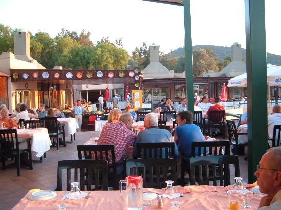 Torba, Turkey: Eating Alfresco