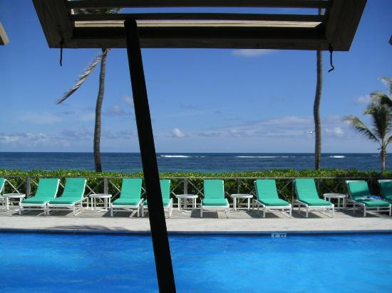 Nisbet Plantation Beach Club : Pool From Coconuts Restaurant