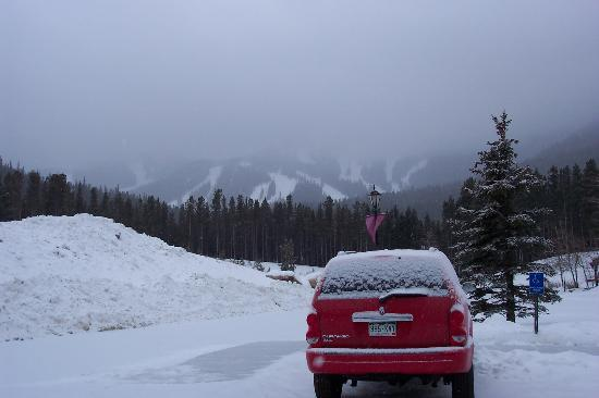 view from parking lot winter park picture of the. Black Bedroom Furniture Sets. Home Design Ideas