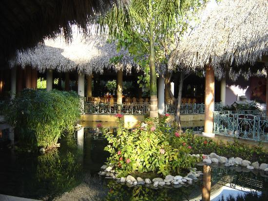 Iberostar Costa Dorada: Grounds