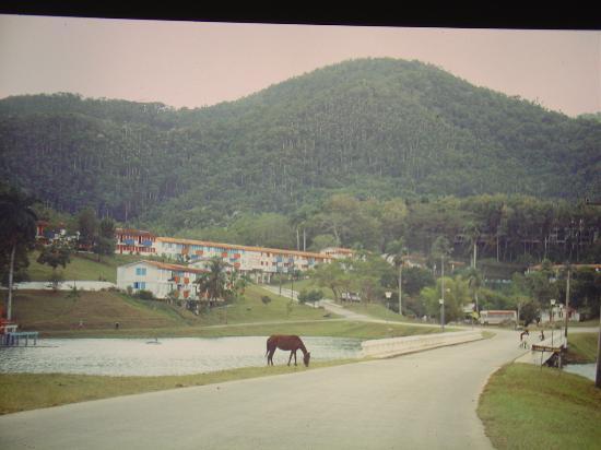 Las Terrazas, كوبا: Terracas: Hotel is hidden in the trees (white building is where local people live)