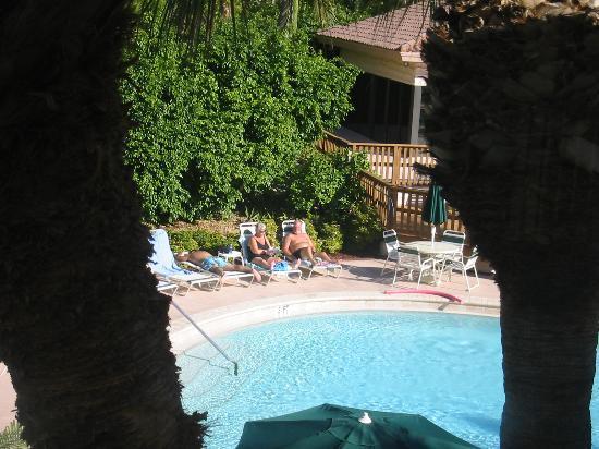 Club Regency of Marco Island : View of Pool