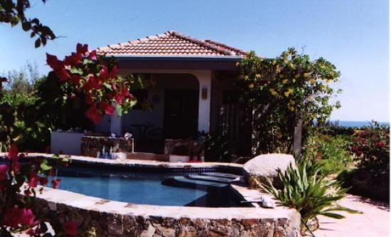 Guavaberry Spring Bay Vacation Homes: Villa - Pool View