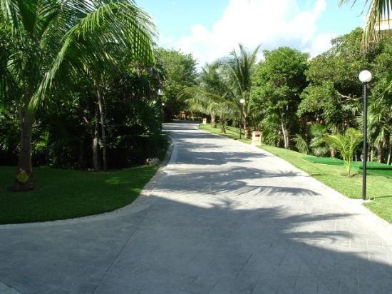 Pathway between villas