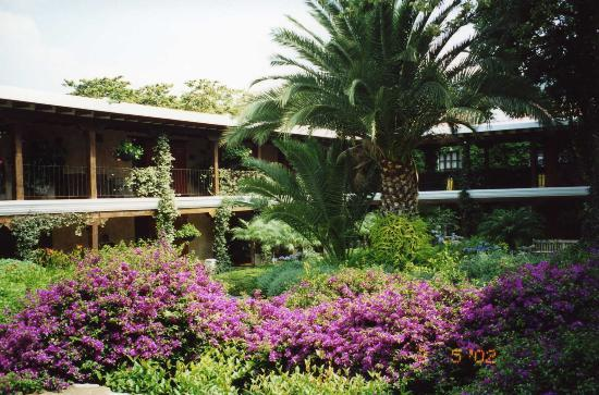 Casa Santo Domingo: Patio