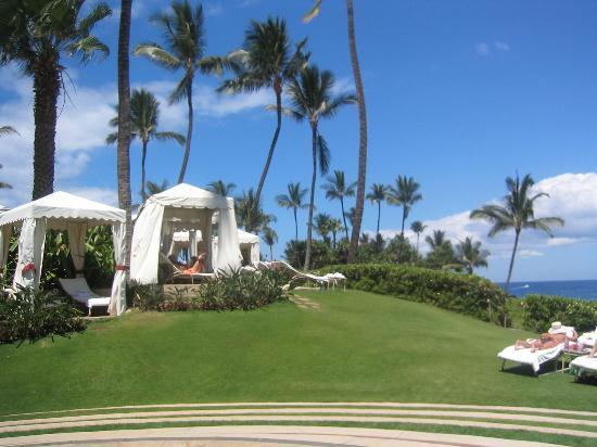 Four Seasons Resort Maui at Wailea: The grass IS greener!!