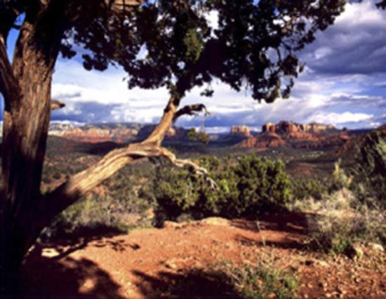 Hyatt Residence Club Sedona, Pinon Pointe: Red Rock Country