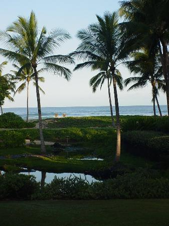Four Seasons Resort Hualalai at Historic Ka'upulehu: A nicer view from our hotel room