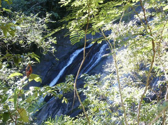Hacienda Buena Vista : A far view of the water fall