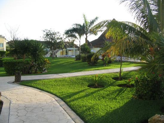 Sandos Caracol Eco Resort : Grounds look good.