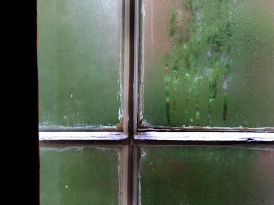 McKendrick - Breaux House: condensation