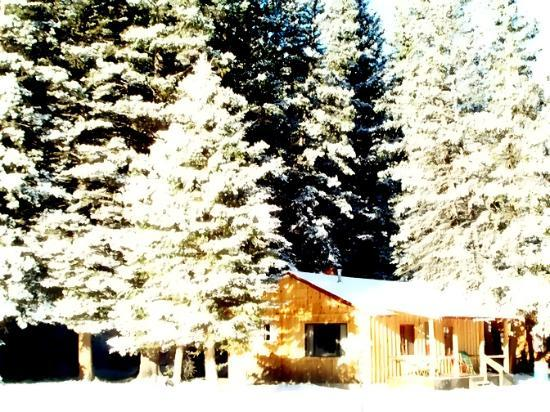 Red River, Нью-Мексико: Rio Colorado Cabin #20 October Snow