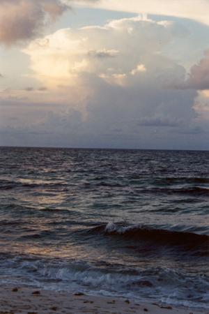 Santa Rosa Island : Sunrise #3