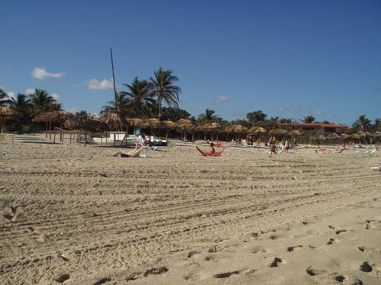 Hotel Oasis: Our Beach