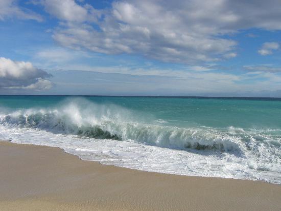 Hilton Los Cabos Beach & Golf Resort: Horseback riding on the beach