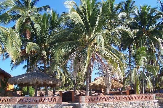 Casa Manana: Palapa area