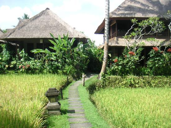 Foto Ananda Cottages