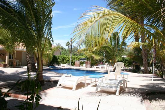 Coco Cabanas Loreto: Central courtyard
