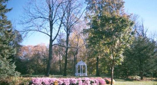 Whetstone Park / Park of Roses : Park of Roses, spring