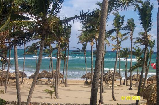Excellence Punta Cana : a room with a view
