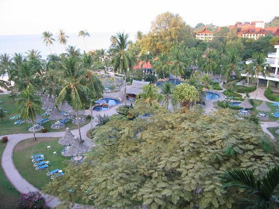 Golden Sands Resort by Shangri-La : Pool view
