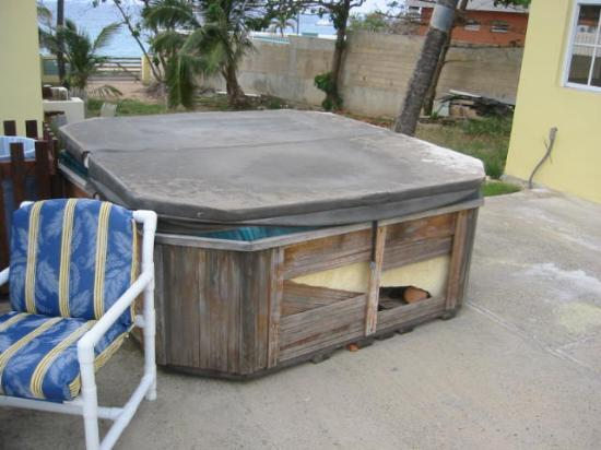Isabela, Puerto Rico: Old jacuzzi full of bugs by the pool