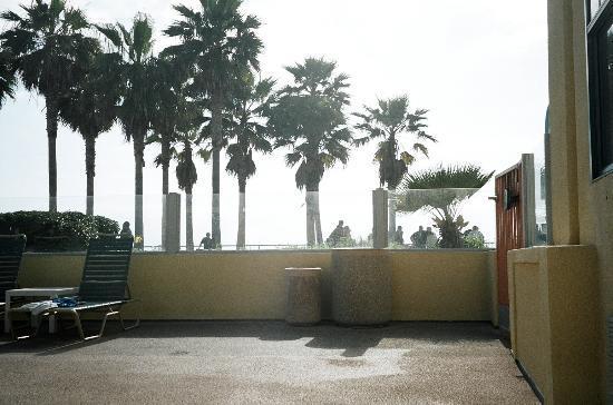 Ocean Park Inn : View from pool.