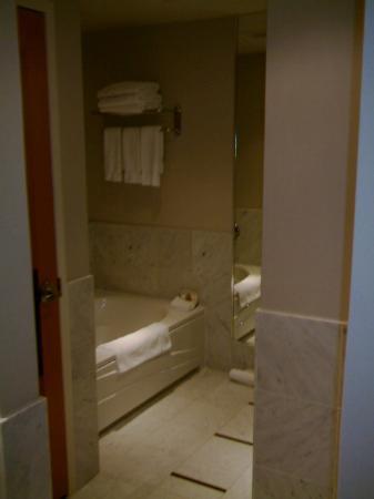 Sofitel Montréal Le Carré Doré : Bathroom2