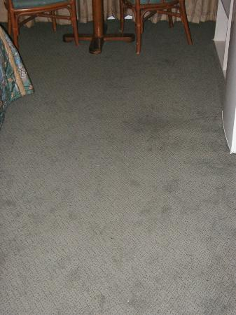 Inn of Homestead: Stained carpet, supposedly new?