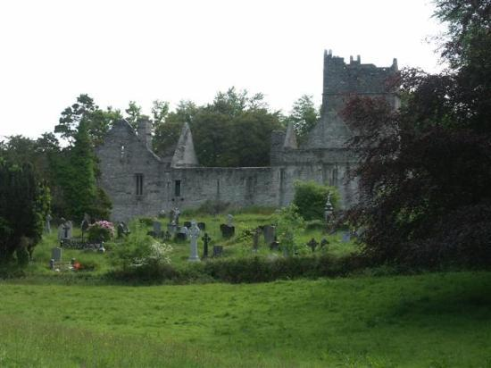 Killarney, İrlanda: Muckross Abbey