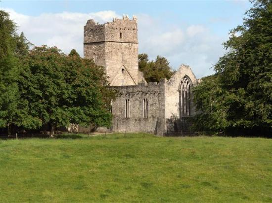 Killarney, İrlanda: Muckross Abbey