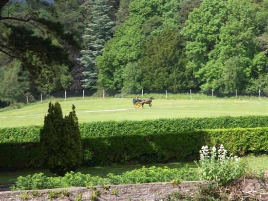 Killarney, İrlanda: Muckross House Park