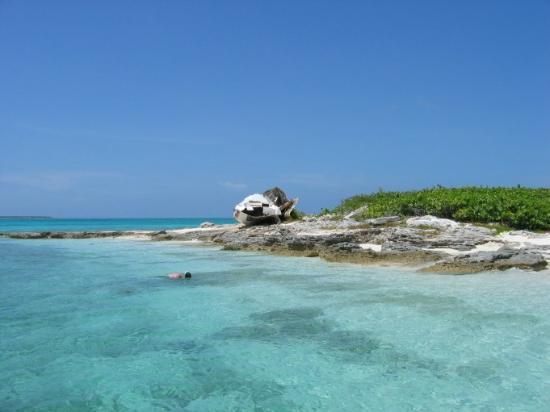 Paradise Point : Snorkeling at nearby islands