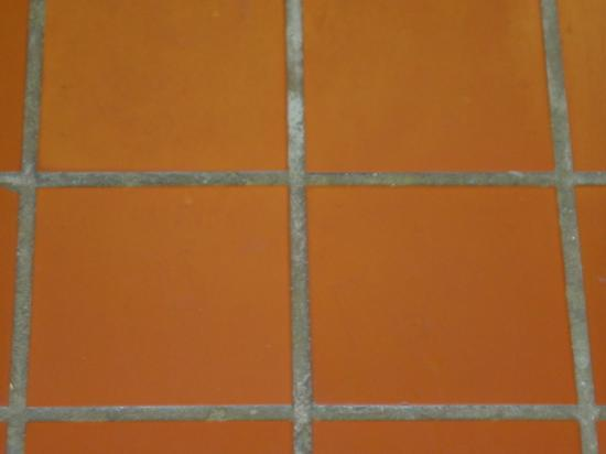 Humacao, Πουέρτο Ρίκο: Filthy grout and tile