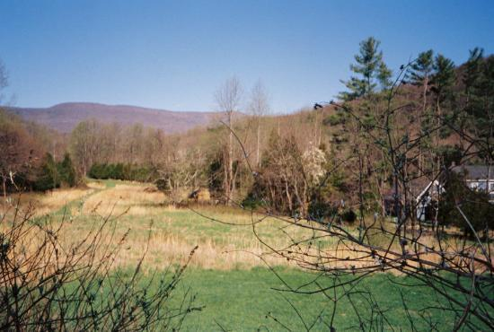The Inn at Sugar Hollow Farm: View towards Skyline Drive