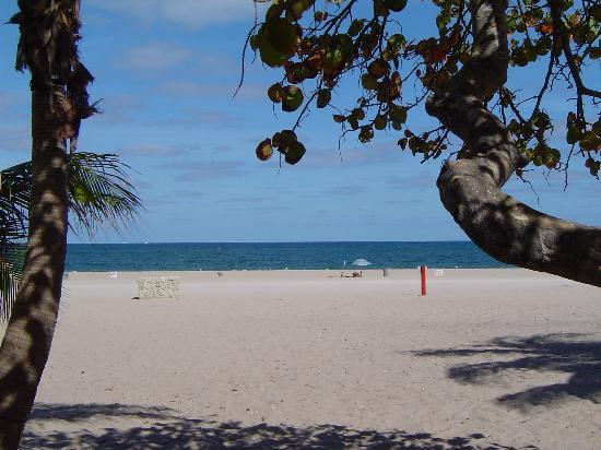 Pompano Beach Resmi