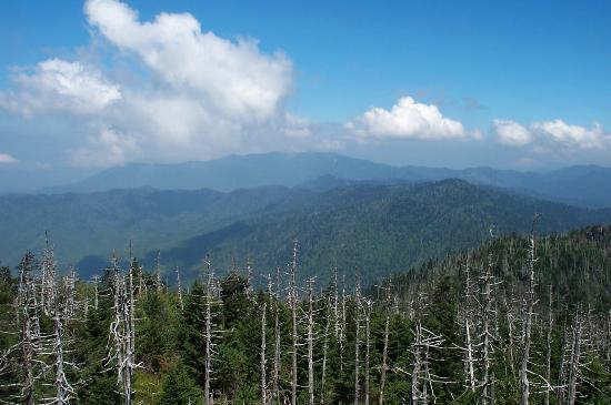 Gatlinburg, Τενεσί: View from Clingmans dome