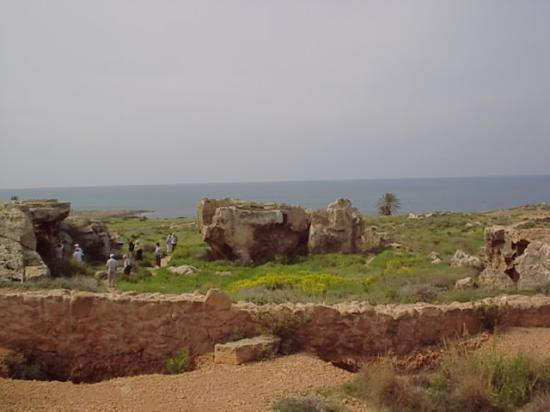 The King Jason Paphos: More tomb of the kings never ending