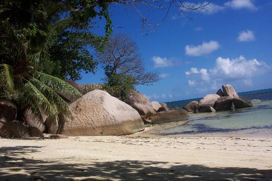 Anse Bois de Rose, Seychelles: a part of one of the (3) beaches at Coco de Mer hotel